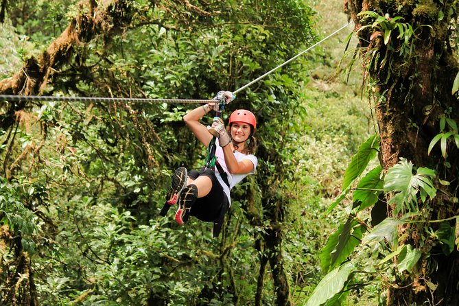 Adventure in Costa Rica, Canopy Tour